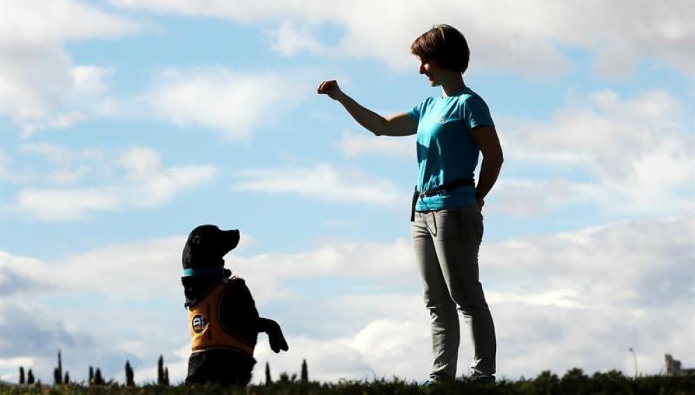 Naroa, la perra que ayuda a víctimas de violencia machista
