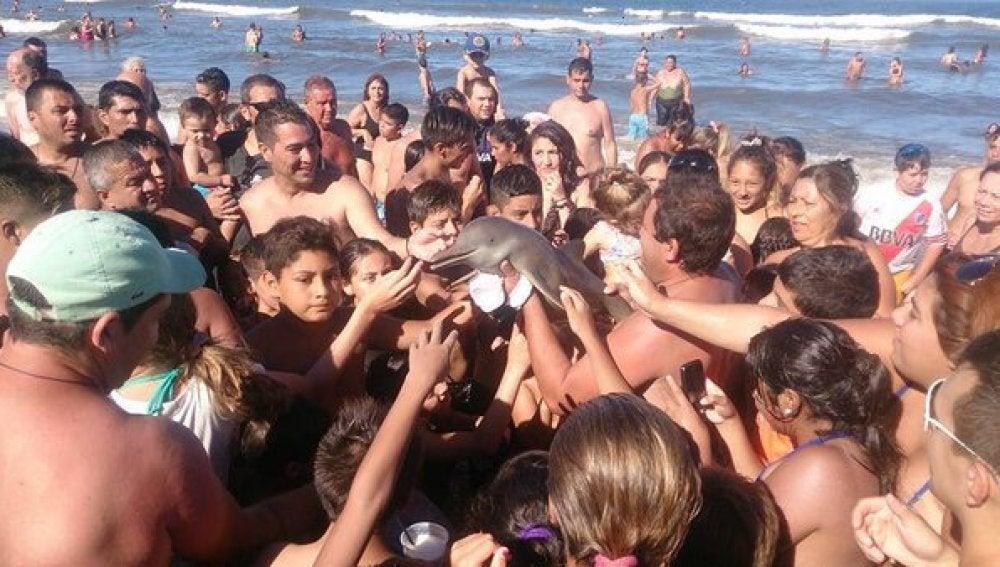 El grupo de turistas haciéndose fotos con el delfín