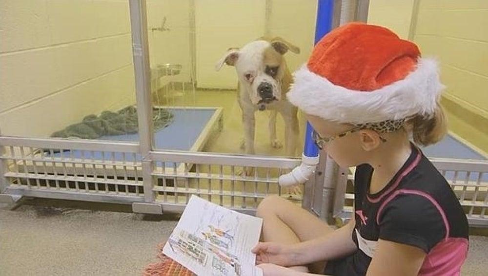 Una niña lee un cuento a un perro del refugio
