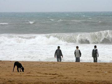 Varios jóvenes y un perro en la orilla de la playa de la Barceloneta.
