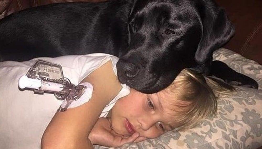 Luke junto a su perro Jedi