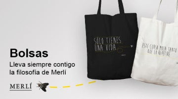 Las bolsas de Merlí