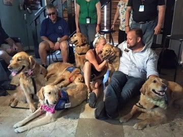 Varios perros ofrecen apoyo emocional a los familiares de las víctimas de Orlando