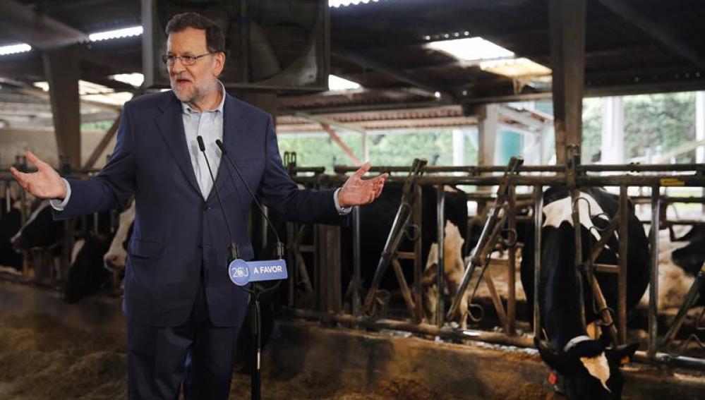 Mariano Rajoy, candidato del PP a la presidencia del Gobierno