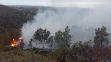 Incendio forestal en Bolbaite