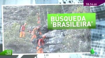 Búsqueda brasileira