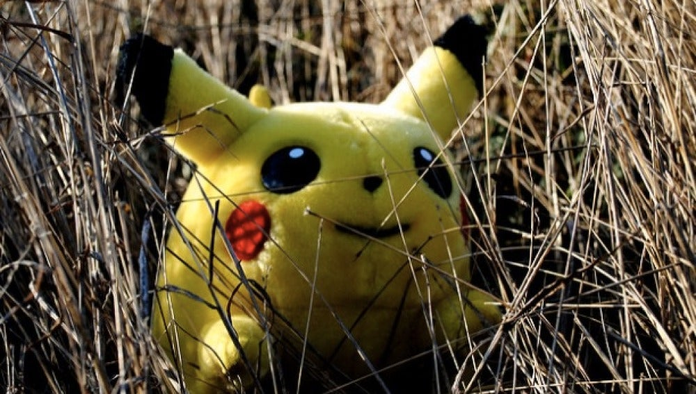 A la caza del Pokémon