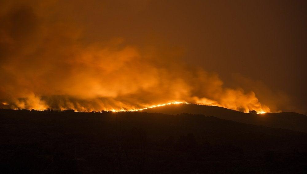 Incendio forestal declarado en Cualedro, Ourense.