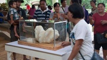 Ciudadanos filipinos contemplan y fotografían la perla gigante
