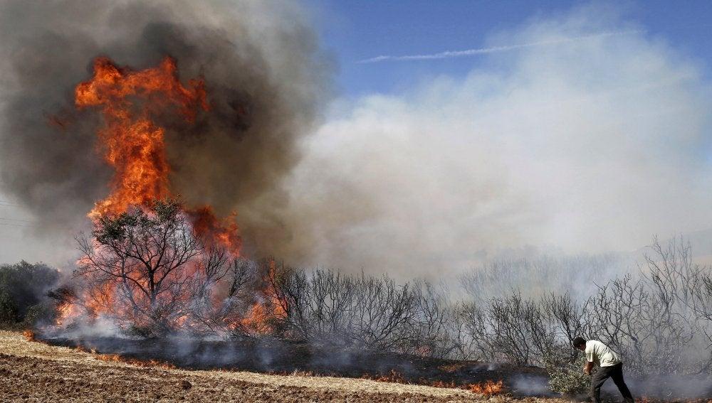Un hombre combate las llamas del incendio declarado en las inmediaciones de la localidad navarra de Tafalla.