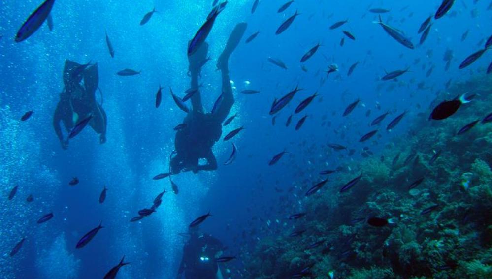 El calentamiento de los océanos afecta a la salud humana