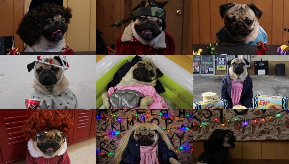 Varios personajes de 'Stranger Things' recreados por Doug the Pug
