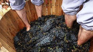 Pisa de la uva en la Fiesta de la Vendimia de Rioja Alavesa