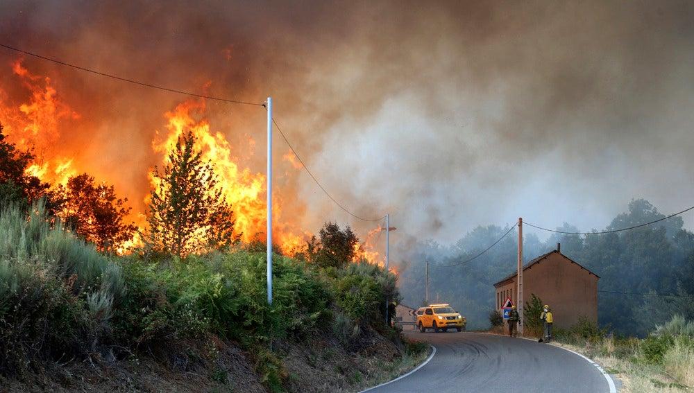 Incendio forestal en la comarca de El Bierzo