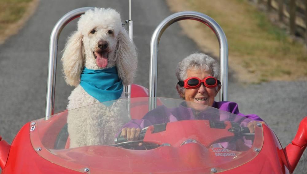 Miss Norma junto a su perro Ringo
