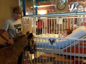 Petie ayuda a los niños de los hospitales