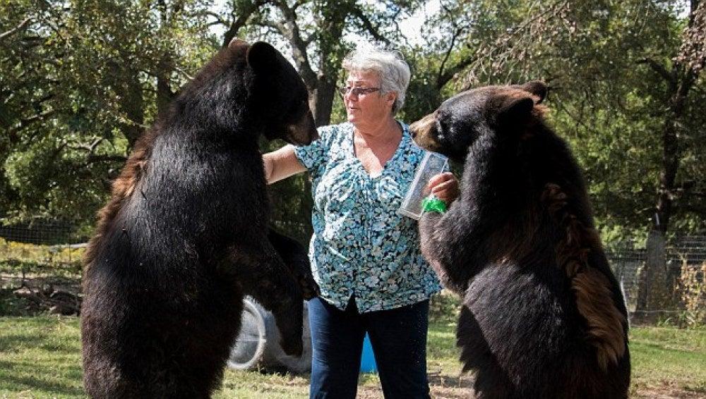 Bonnie Hart con sus osos