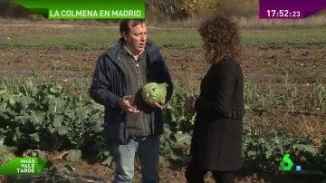 Frame 52.640396 de: alimentos ecológicos