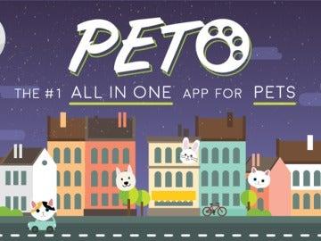 PETO, la app para ligar con mascotas