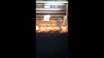 Una rata en el mostrador de una panadería Granier