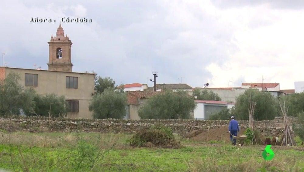 Frame 11.584317 de: Un pueblo a una hora de Córdoba con 1.600 habitantes, el lugar que más pedidos le hace a Amazon en toda España