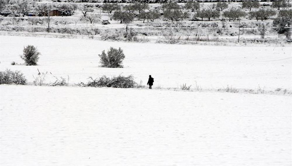 Nieve en Alicante