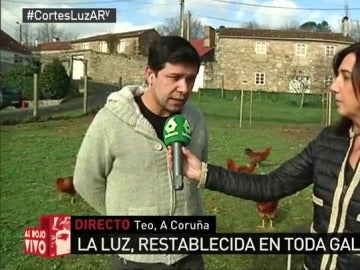 Carvajales