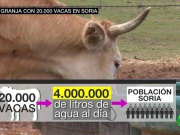 Frame 53.341346 de: El macroproyecto lechero de Soria divide a los ganaderos: creará empleo pero podría forzar el cierre de cientos de granjas