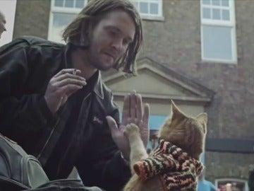 Frame 11.264397 de: Bob, el gato callejero que hizo millonario a un vagabundo yonqui