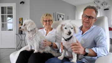 Encuentran a su perro perdido 11 años después