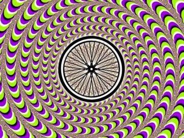 El LSD se vincula al Día Mundial de la Bicicleta