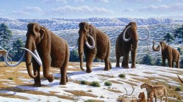 La humedad impulso la extincion de la megafauna de la Edad de Hielo