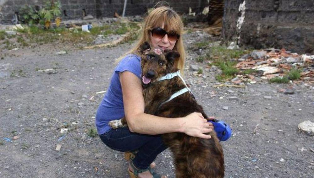Una protectora se hizo cargo del animal tras la brutal paliza recibida