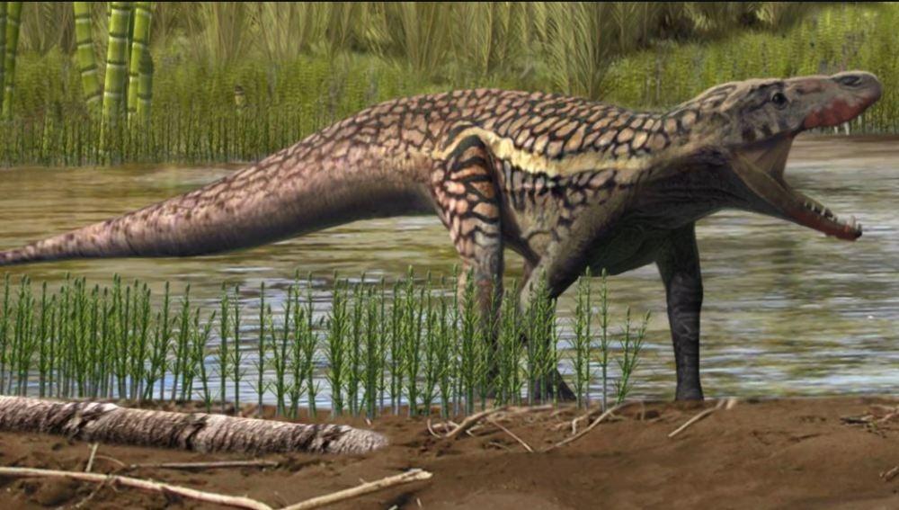 Reconstrucción artística de un arcosauromorfo. Autor: Oscar Sanisidro / Institut Català de Paleontologia Miquel Crusafont