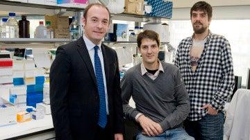 El mayor tiempo entre tumor primario y metastasis hace mas agresivo al cancer