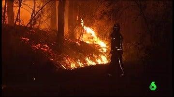 Frame 0.0 de: incendios norte