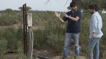 Pozo ilegal en Doñana