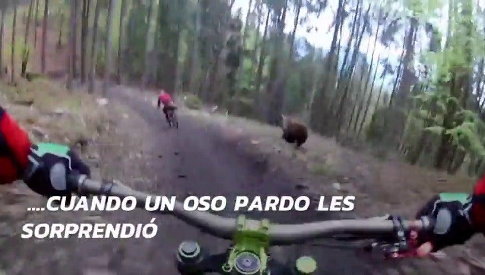 Frame 17.008365 de: El escalofriante momento en que un oso ataca a dos ciclistas en pleno bosque