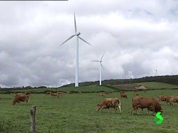 381 molinos de viento se han instalado en Muras