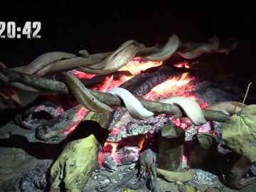 Los aventureros cenan serpientes