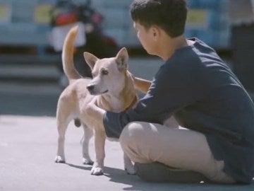 El joven youtuber abrazando a un perro callejero