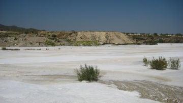 La reutilizacion de lodos de marmol permite regenerar suelos contaminados