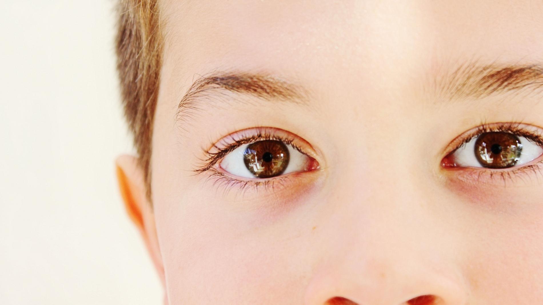 Las distintas partes del rostro son procesadas por neuronas diferentes