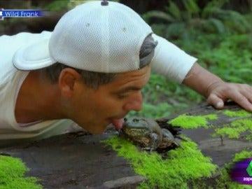 Frank Cuesta besa a una rana