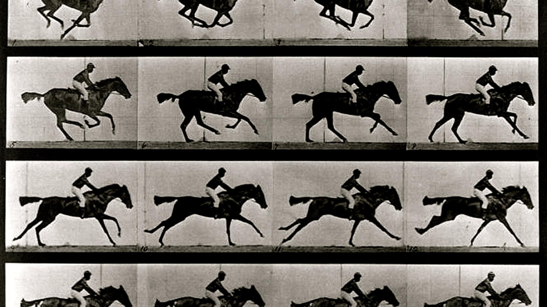 """El hombre que tomaba fotografías """"tipo Matrix"""" en el siglo XIX"""