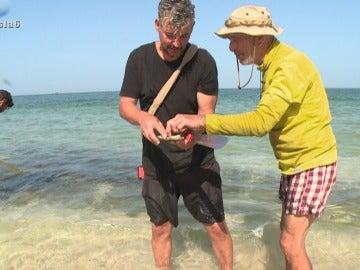 Los aventureros comen ostras
