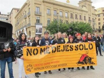 """Cientos de personas piden en Pamplona """"el fin a la tauromaquia"""""""