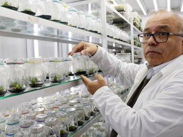 Científico de la Universidad de Santiago de Chile