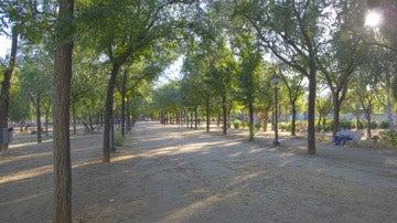 El parque Amate de Sevilla donde ha sido encontrado el cuerpo de la mujer