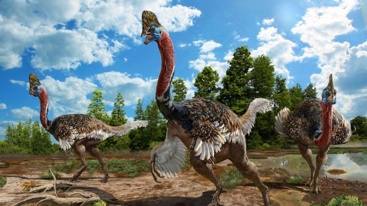 Recreación artística del Corythoraptor